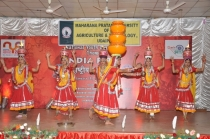 16th National youth festival-2011